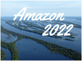 Amazon, through the equator